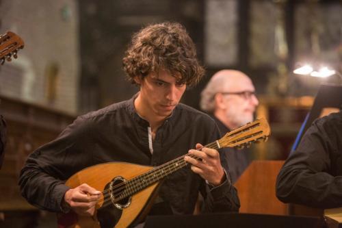 Muzikanten - Musicians